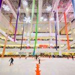 از پیست هاکی برای ورزش های دیگری مانند پاتیناژ یا اسکیت روی یخ نیز میتوان بهره برد.